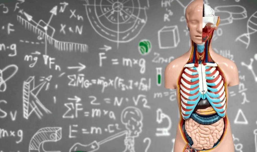 anatomical gift program