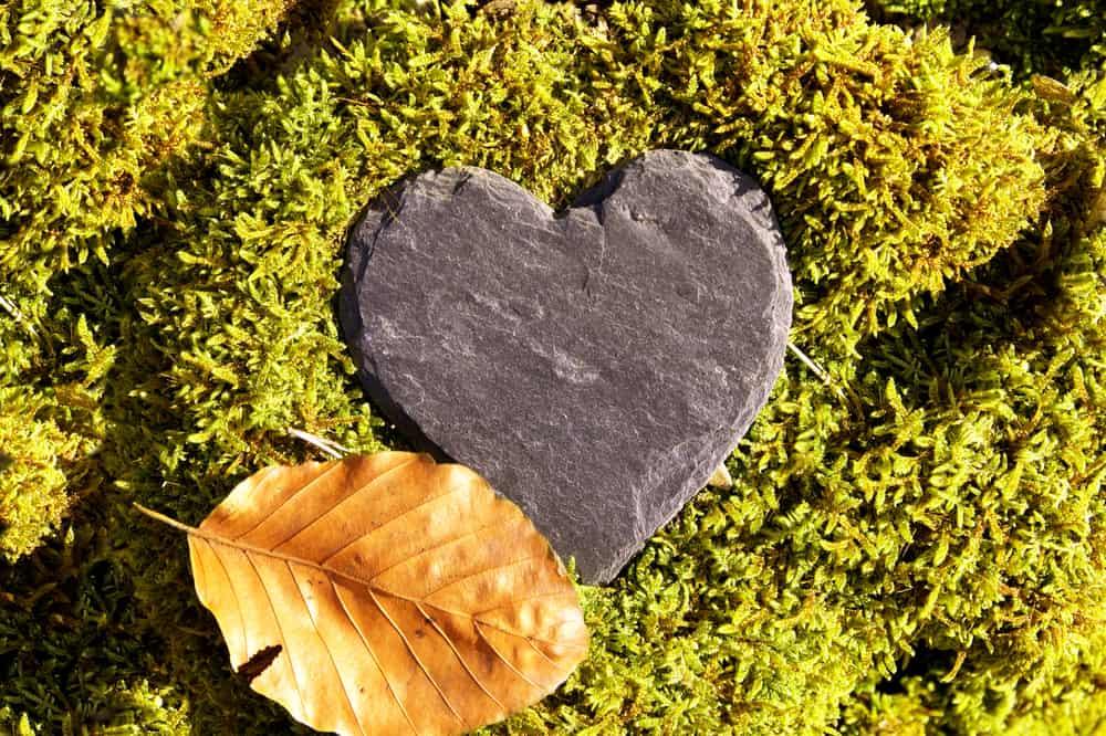 Heart,Sympathy,Or,Funeral,Heart,,Blank,Slate,Heart,Green